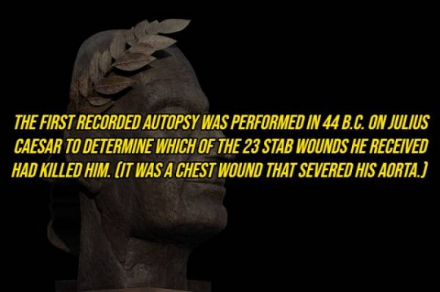 Interesting Facts, part 108