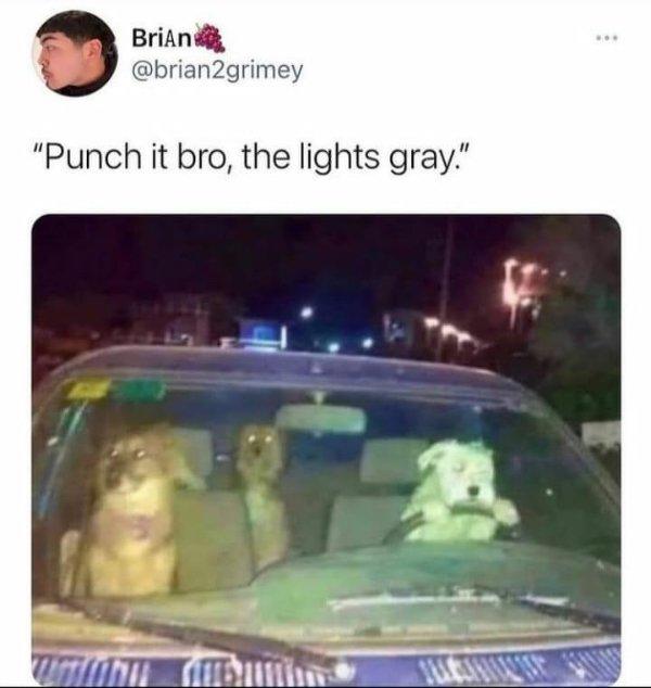 Random Funny Memes, part 210