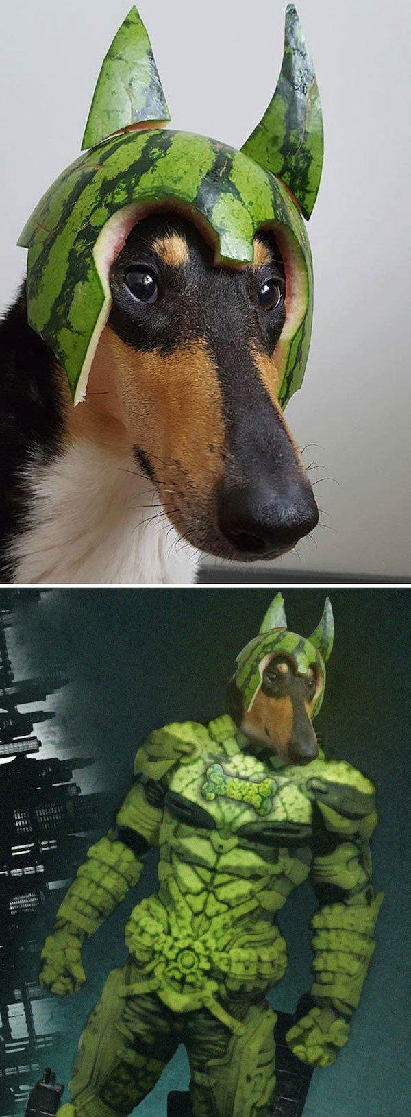 Funny Photoshop, part 2