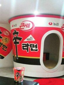 Life In South Korea