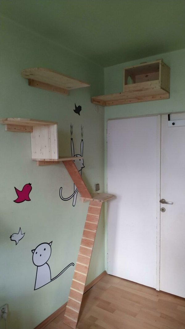 Amazing DIY Projects, part 11