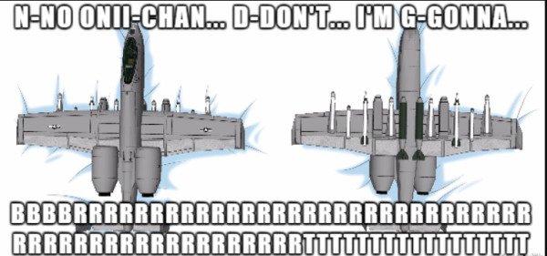 Warthog Memes