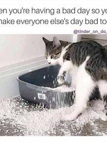 Bad Days Happen