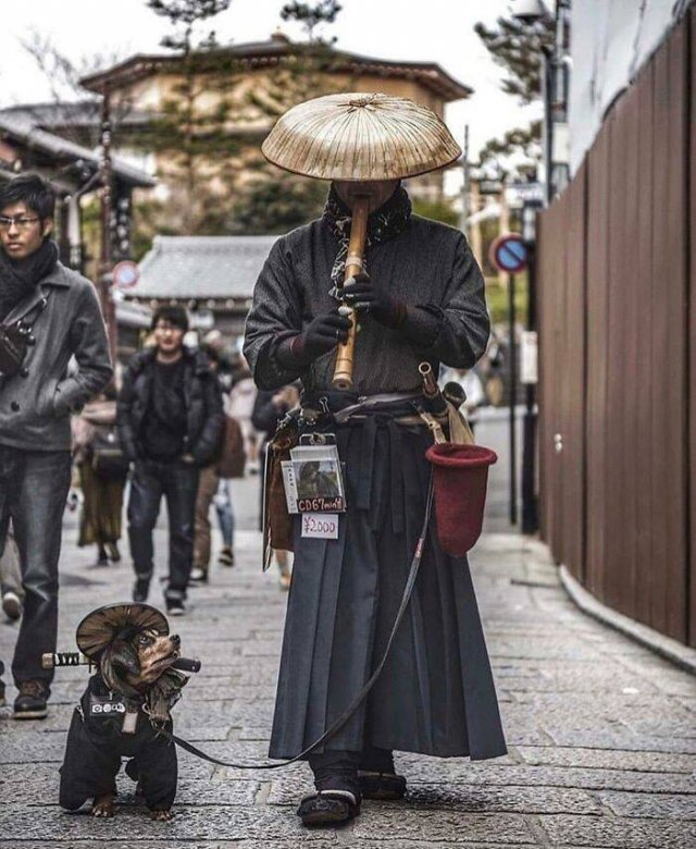 Life In Japan, part 4