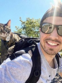 This Cat Loves Adventures