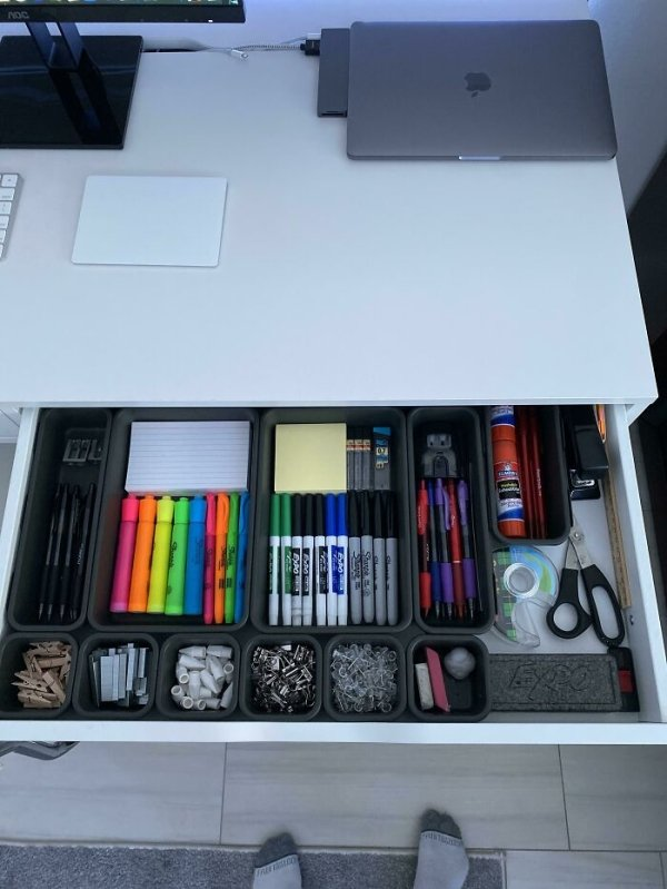 Organization Satisfaction