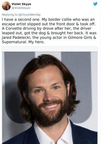 Unusual Celebrity Encounters