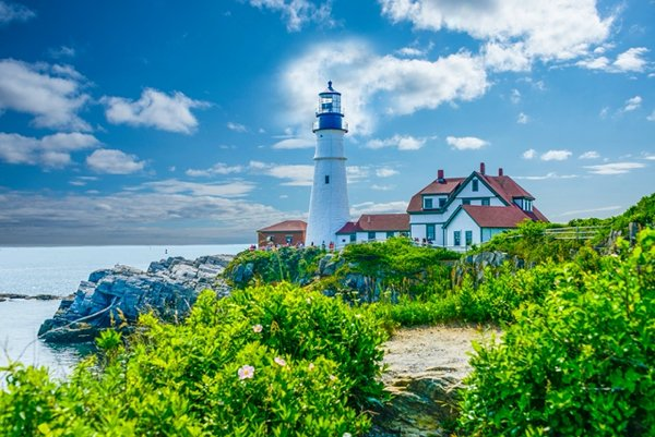 Top 20 US States You Should Go For A Trip This Summer