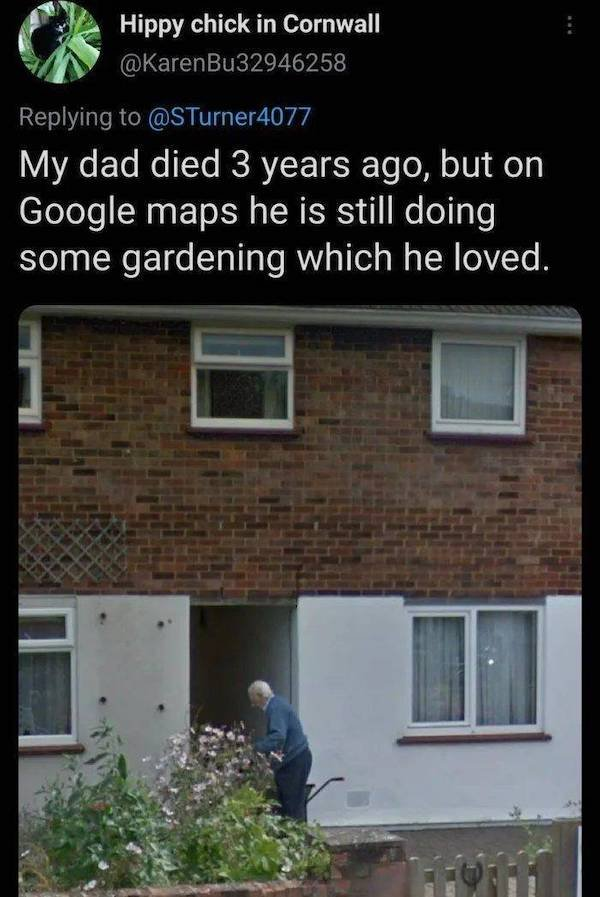 Wholesome Stories, part 53