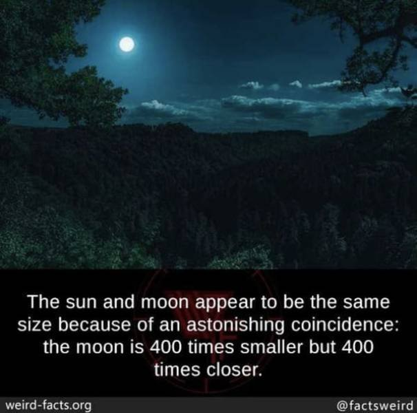 Interesting Facts, part 117
