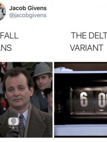 The Delta Variant Memes
