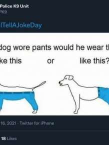 People Share Funny Tweets On The National Joke Day