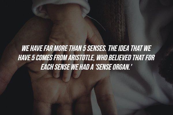 Common Human Body Myths