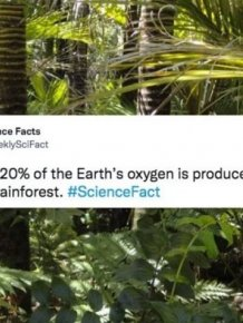 Science Facts