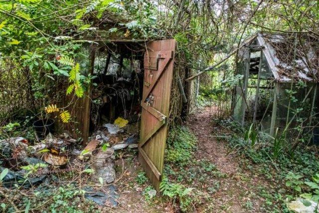 Abandoned Cottage In Verwood