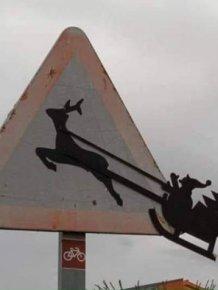 Mild Vandalism