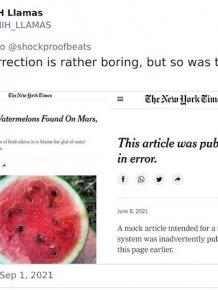 Insane Newspaper Corrections
