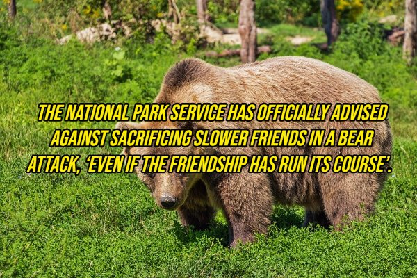 Interesting Facts, part 129
