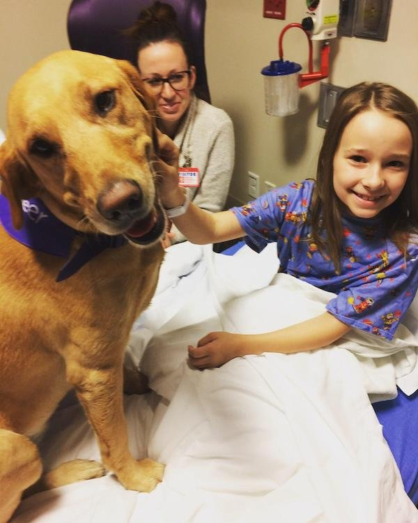 When Pets Save Human