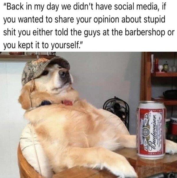 Random Funny Memes, part 246