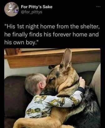 Beautiful Stories